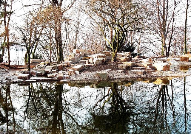 Naturnaher Teich oder Schwimmteich.