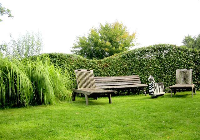Pflanzenverwendung: Heckenpflanzen bilden eine architektonische Grundstruktur im Garten.