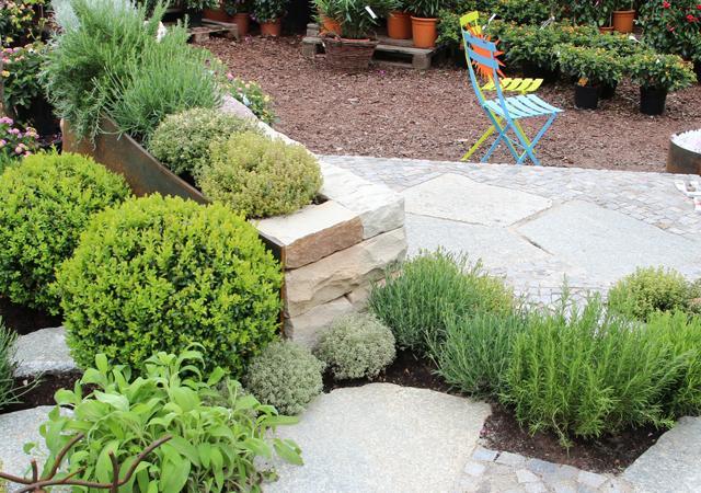 Auf kleinstem Raum entsteht ein mediterraner Garten.