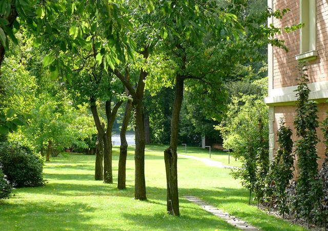 Entlang einer Baumreihe gelangt man zur Havel.