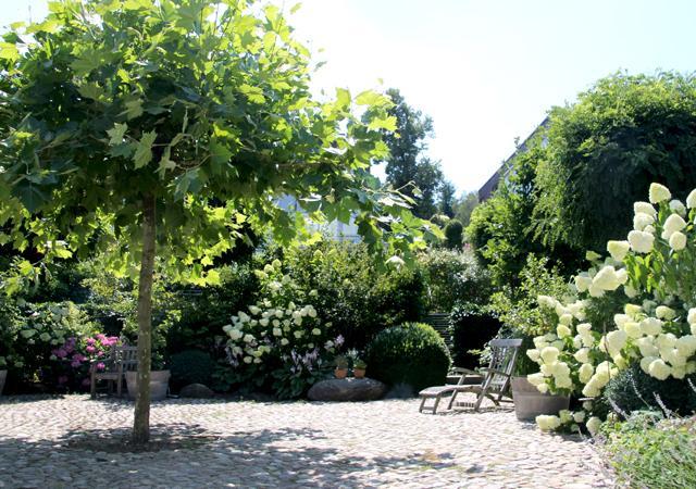 Ein blühender Garten ohne lästiges Rasenmähen.