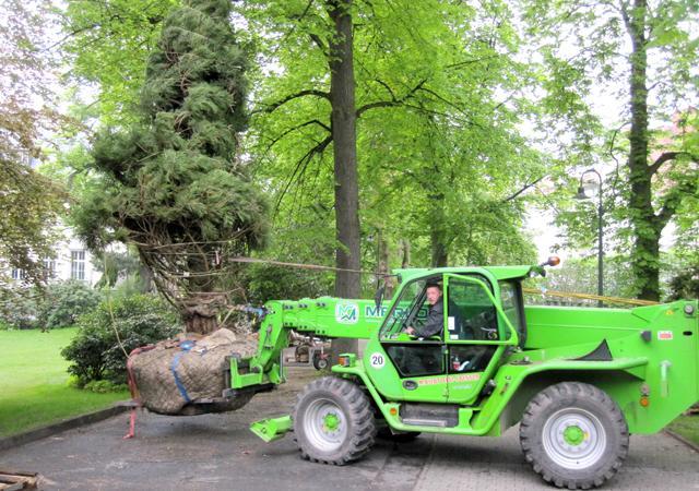 Großbaumpflanzung mit moderner Telelader-Technik.