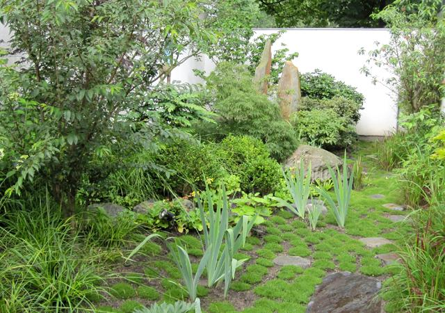 Nach der Pflanzung braucht es etwas Zeit, damit die Pflanzen die Lücken schließen können.