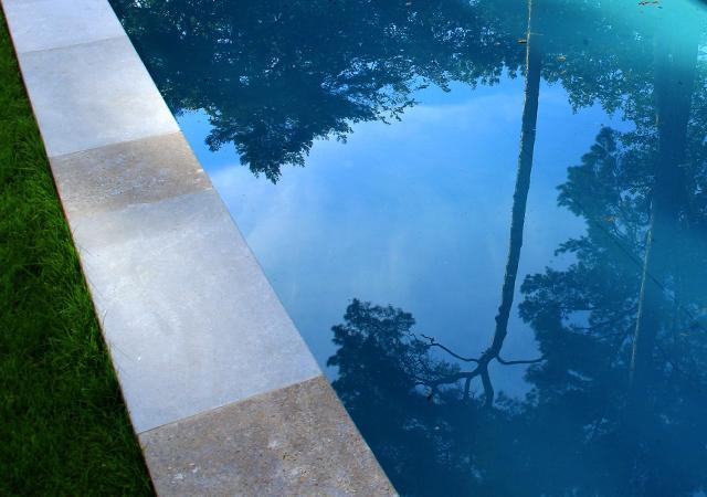 Pool im Kiefernwald