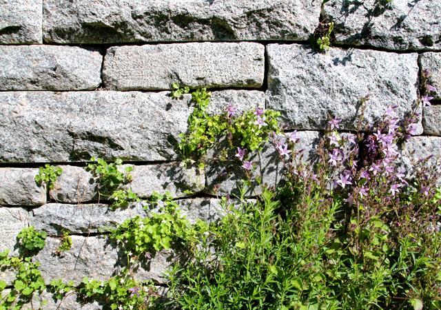 Eng gefügtes Mauerwerk mit Raum für Pflanzen.